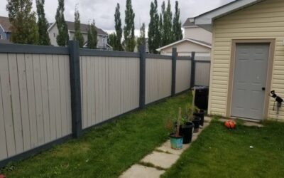 Fence Painting Project