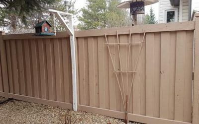 Painting Fence St Albert