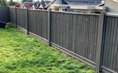 Paint Fence