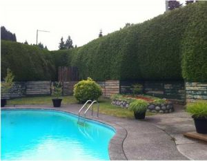 695 Burley Drive West Vancouver